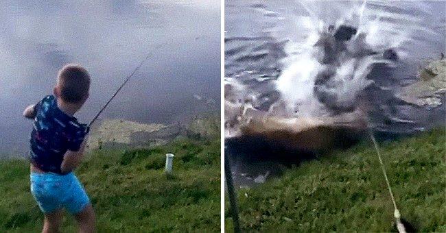 Տեսագրվել է, թե ինչպես է ալիգատորը հայտնվում 7 ամյա տղայի ձկնորսական կարթում