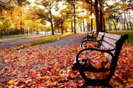 Օդի ջերմաստիճանը հոկտեմբերի 25-27-ի ցերեկն աստիճանաբար կնվազի 4-6 աստիճանով